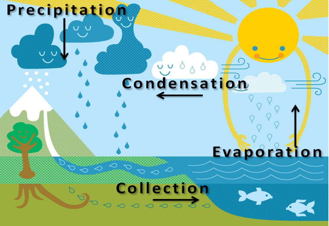 Technology The Water Cycle