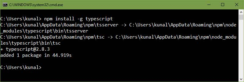 Installing TypeScript using the Node Package Manager