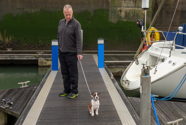 Photo of Phil taking Ruby for a walk on the pontoons today (Friday)