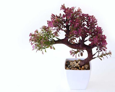 Japanese Bonsai Bush - Pink Shaded, With Vase ! Home Decor