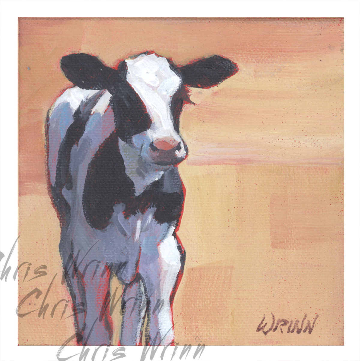 Cow Paintings for Sale 5x5 Inches on Gallery Wrapped Canvas | A New Day!