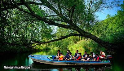 hutan mangrove pulau bintan