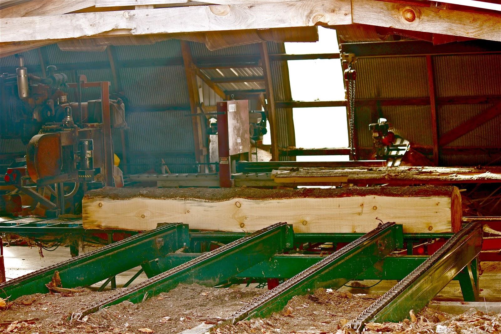 The Cabin Countess : An Amish Sawmill