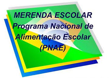 Resultado de imagem para Programa Nacional de Alimentação Escolar (PNAE)