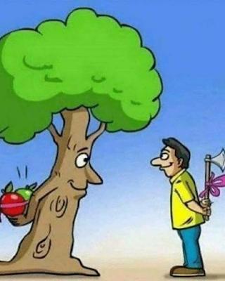 elma, elma ağacı, karikatür, çevre bilinci, çevre kirliliği, doğa katliamı, ağaç katliamı,