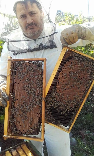 Σε μια δύσκολη χρονιά μπορούμε να φτιάξουμε δυνατά μελισσια; Η απάντηση είναι ΝΑΙ αρκεί να το θελήσουμε photos