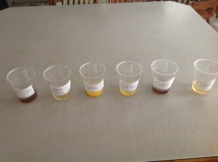 Contoh dan Dasar Karya Ilmiah : Penentuan Kadar Gula dalam Berbagai Minuman