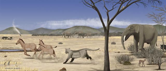 A sub-desert savanna spread across Madrid 14 million years ago