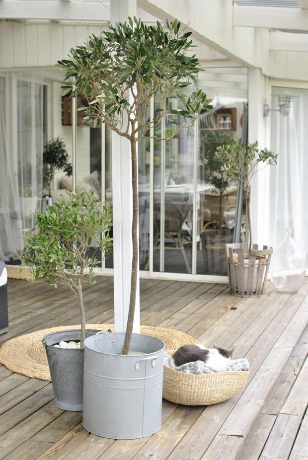 hannashantverk.blogspot.se altan vår olivträd katt