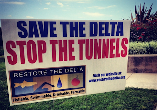 Will Jerry Brown Find 'Common Ground' With Trump on Building Delta Tunnels?