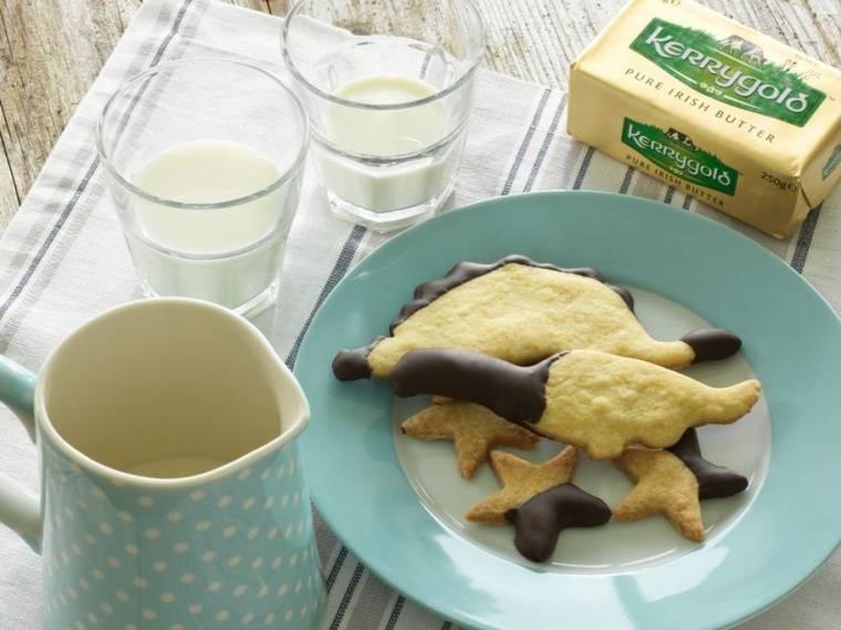 Chocolate Dipped Orange Biscuits Dinosaurs