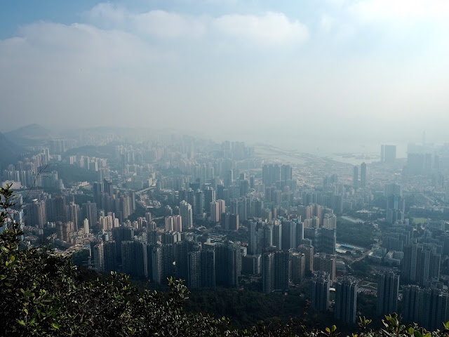 View from Lion Rock, Kowloon, Hong Kong
