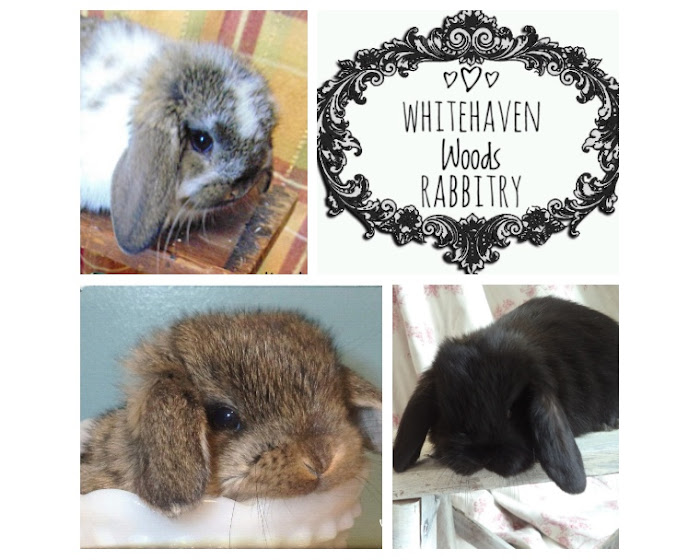 Whitehaven Woods Rabbitry : About Us