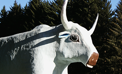 paul bunyan babe blue ox klamath california redwoods