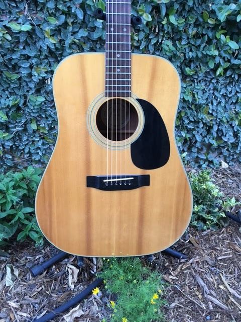 Rex and the Bass: Goya G-312 Acoustic Guitar Review