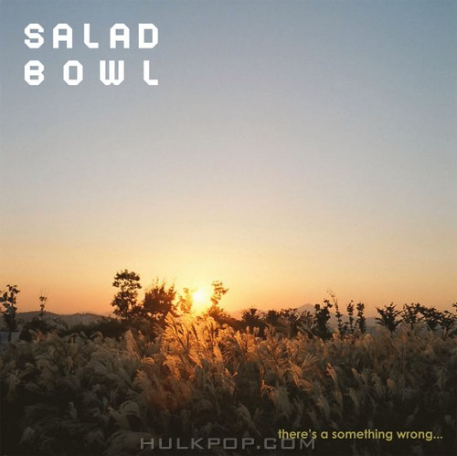 Salad Bowl – There's a Something Wrong…