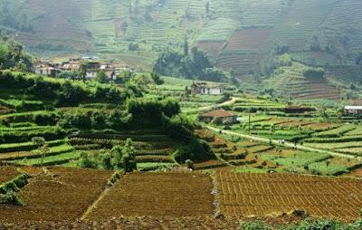 Tanah dan Sistem Pertanian di Indonesia
