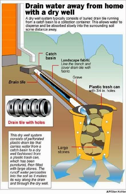 marin termite control