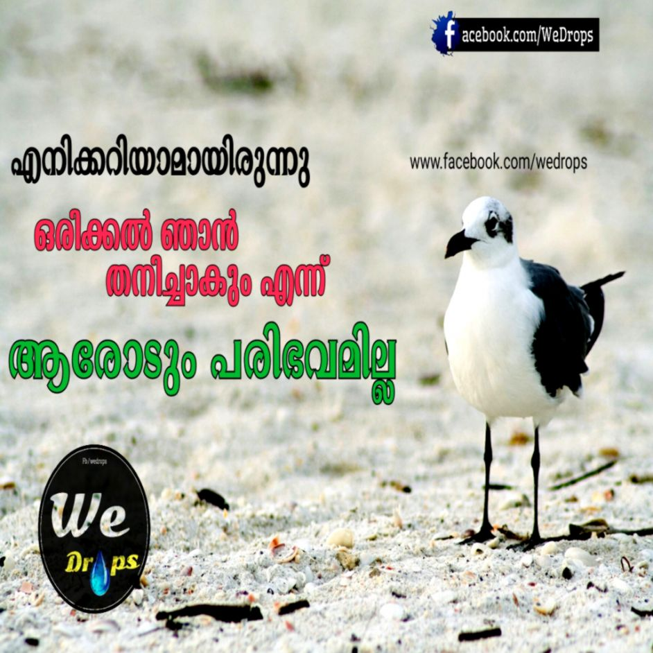 Feeling Alone Quotes Sad Malayalam Aiinpunya