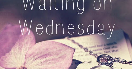 Cold Summer|Waiting on Wednesday