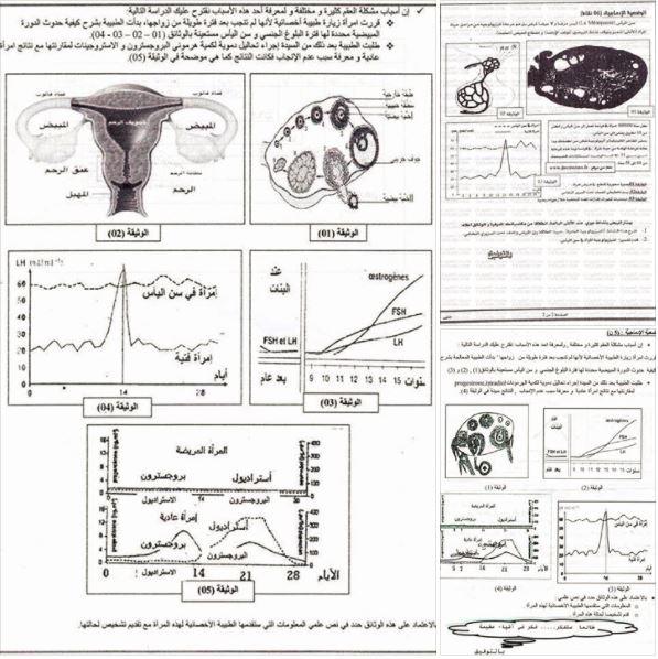 وضعيات ادماجية للعلوم الطبيعية للسنة القانية علوم تجريبية