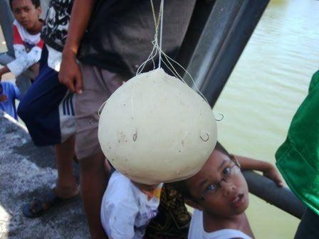 cara mancing ikan belanak dengan botol