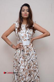Telugu Actress Reshmi Thakur in Long Dress at Plus One ( 1) Audio Launch  0049.jpg