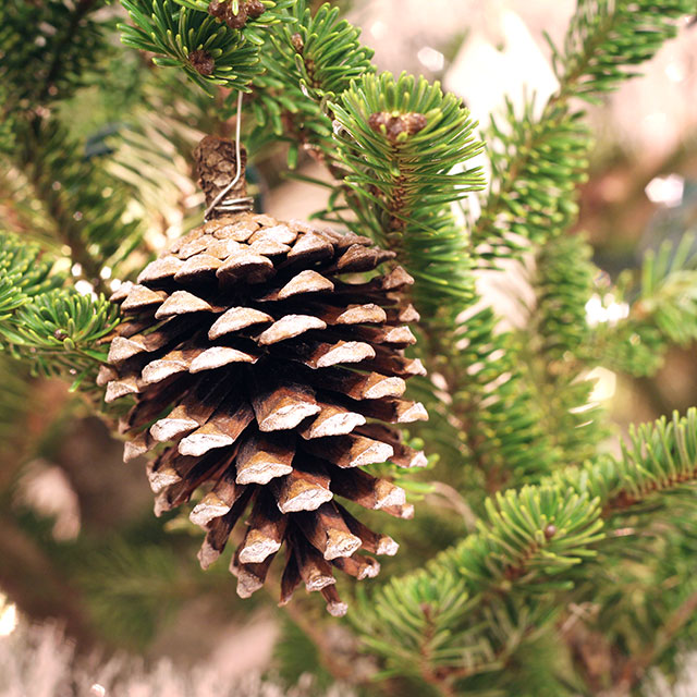 DIY snowy pinecone ornaments