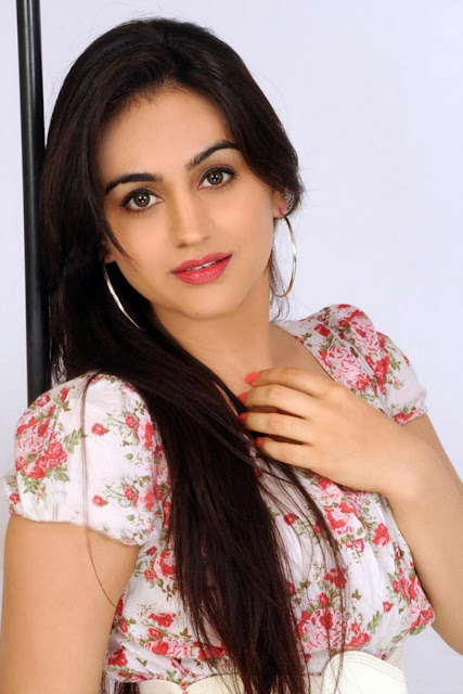Tollywood Celebrities Aksha Pardasany Profile