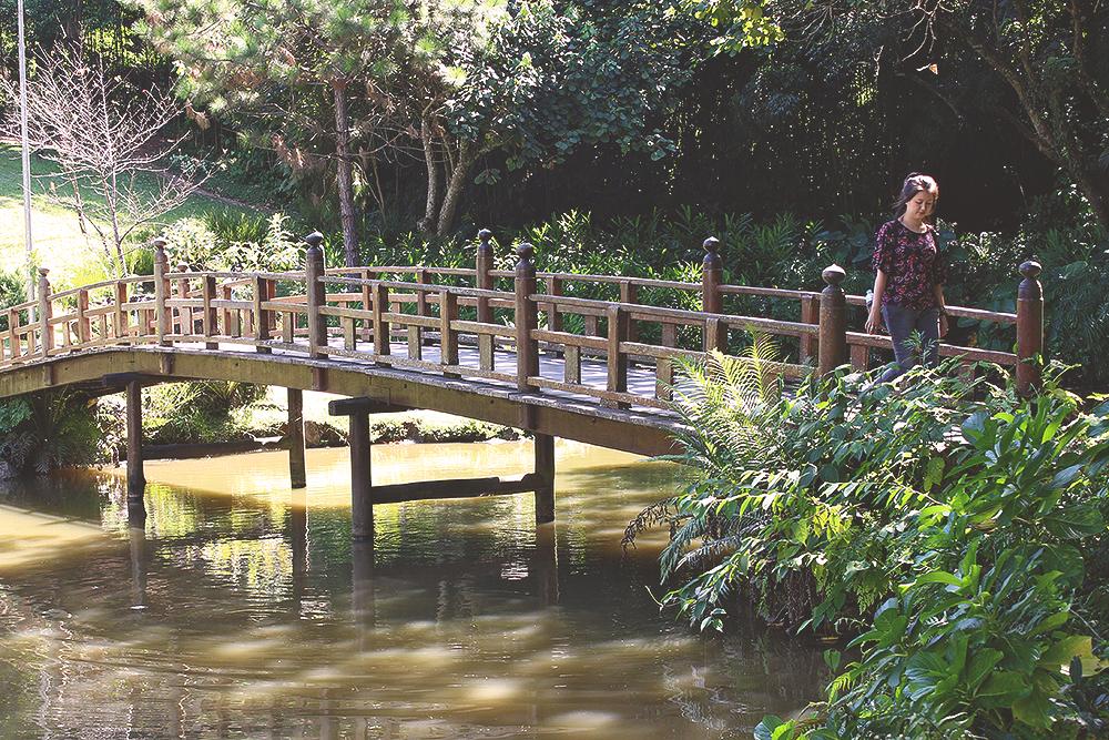 ponte madeira jardim templo budista zu lai