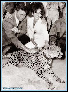 Burt Lancaster y Claudia Cardinale posando junto a un guepardo