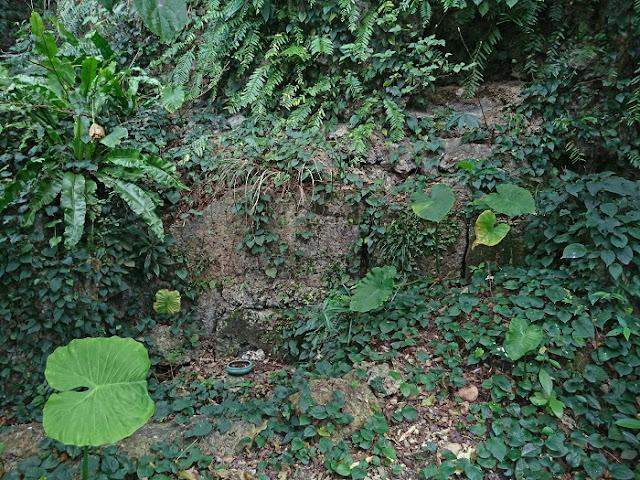 イリの墓の写真