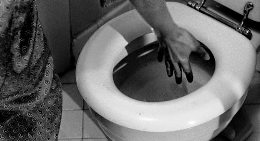 Image result for janet leigh flushing toilet in psycho