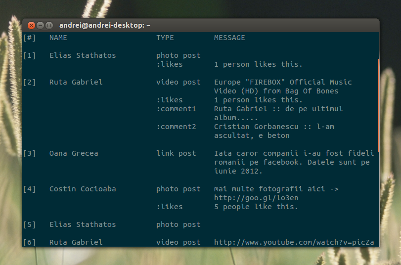 Use Facebook From The Command Line With fbcmd ~ Web Upd8