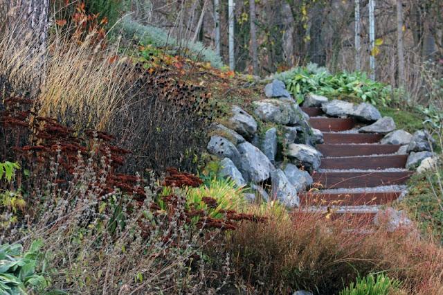 gradina frumoasa, profesionist, arhitect peisagist, amenajari gradini bucuresti, ilfov, gradina naturalista