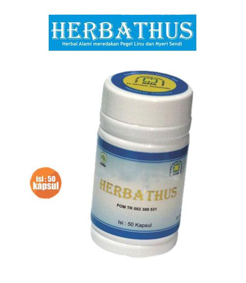 HERBATHUS Produk Alami Untuk Asam Urat