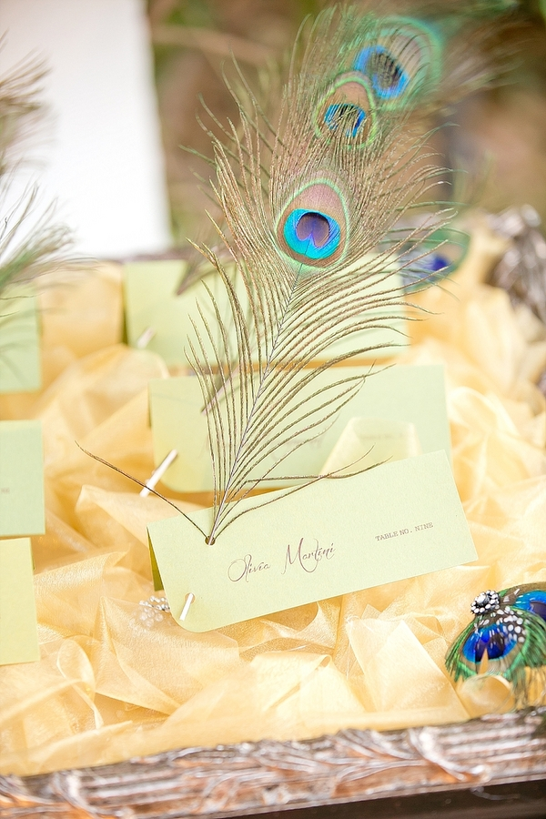 feather+wedding+theme+inspiration+blue+teal+turquoise+beige+champagne+green+reception+table+centerpiece+table+place+setting+escort+card+cards+bouquet+bridesmaids+dresses+bridal+dress+gown+meghan+wiesman+photography+27 - Show your feathers!
