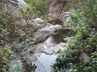 Rubio Canyon creek