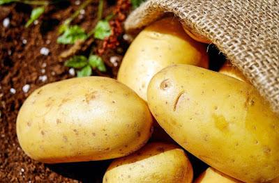 Peluang Usaha Sayuran Kentang
