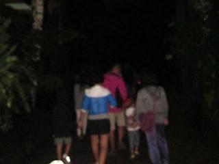 Mencari Kunang-Kunang