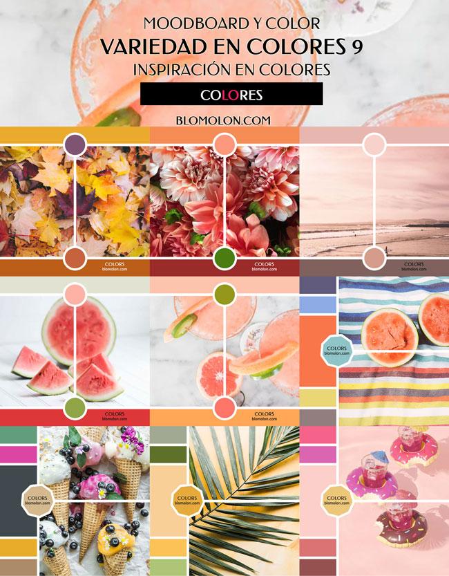 variedad_en_color_blomolon_5