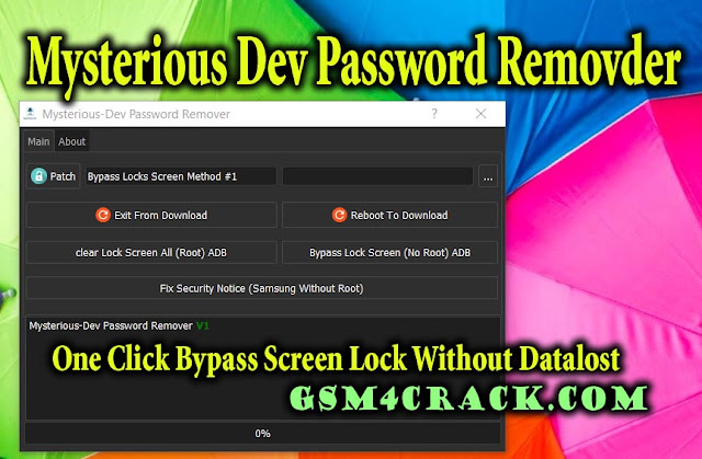 Mysterious-Dev Password Remover Tool