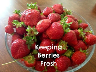 """A bowl of strawberries with the words \""""Keeping Berries Fresh\"""" super imposed on them"""