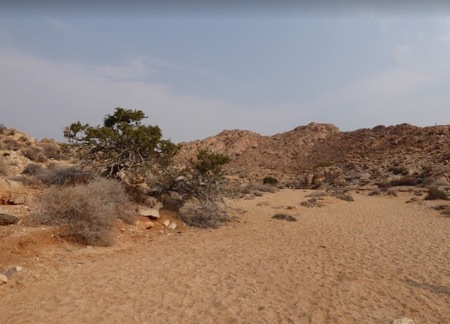 schanzen trail sulla sabbia