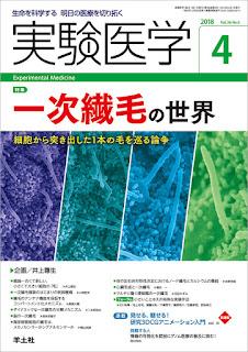 https://www.yodosha.co.jp/yodobook/book/9784758125062/
