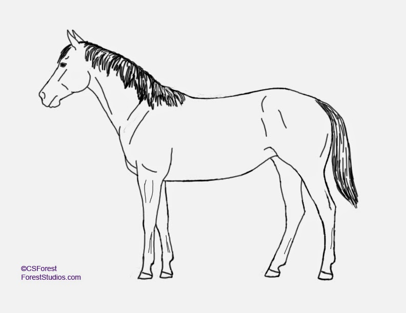 Crista Forest S Animals Art How To Draw Animals Horse Legs Part 2