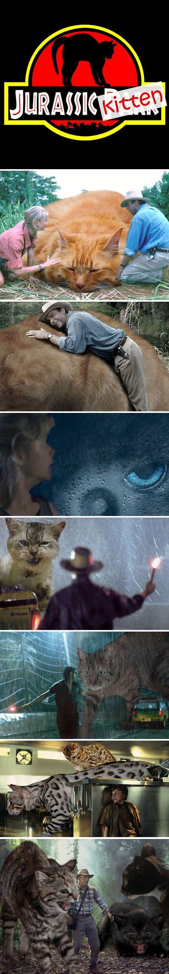 Funny Jurassic Kitten Joke Picture