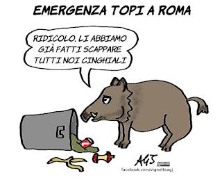 topi, rifiuti, roma, roma pulita, cinghiali, vignetta, satira