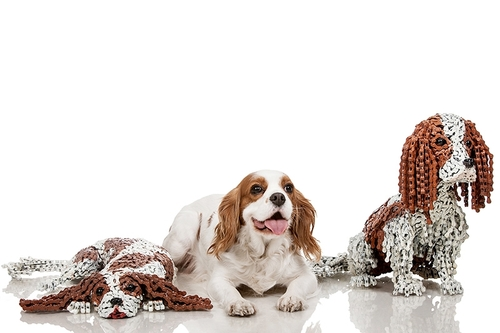 00-Nirit-Levav-Recycled-Bicycle-Parts-used-for-Unchained-Dog-Sculptures-www-designstack-co