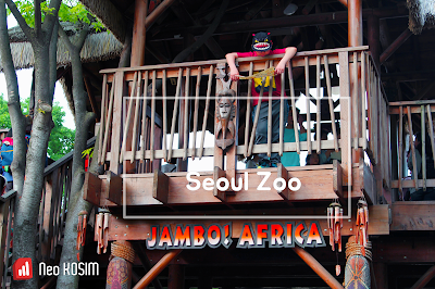 Let's go to the Seoul Zoo(서울동물원) in the forest !